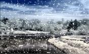 ☜風飛❀雪舞☞家族