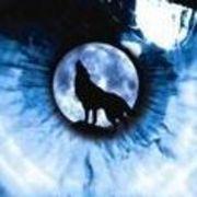 ☂╄→獨狼☂