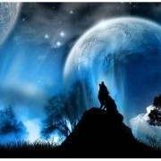 绝地。苍狼